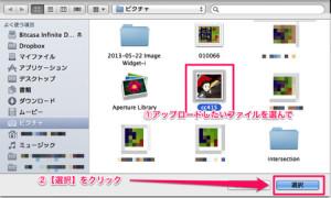 image_widget_012